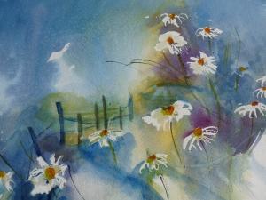 Fleurs des champsP1000624