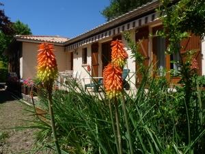 Mon jardinP1000281