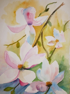 Fleurs de magnoliaP1010743